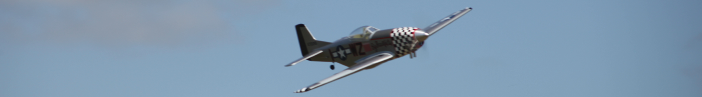 p51 2.png